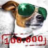 Sprüche - 100.000 Sprüche, Witze & Zitate